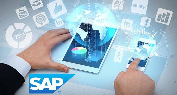 ¿Cómo es que las PyMEs abordan la digitalización?