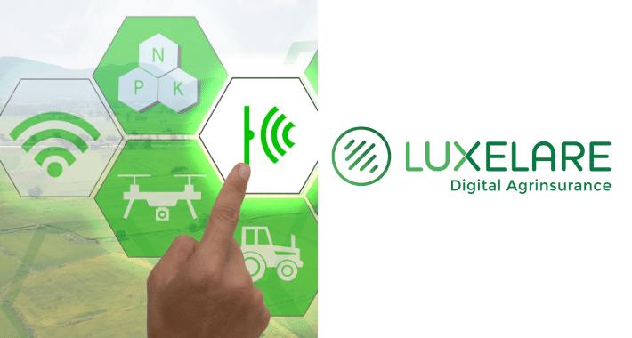Luxelare lanza plataforma de mensajería que revolucionará la agricultura en MX