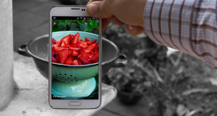 Inteligencia Artificial aplicada en la industria de alimentos